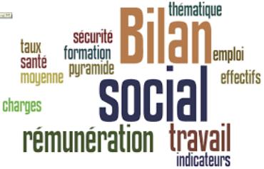 (Français) BILAN SOCIAL OU DECLARATION ANNUELLE DE LA SITUATION DE LA MAIN D'OEUVRE ( DASMO)
