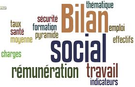 BILAN SOCIAL OU DECLARATION ANNUELLE DE LA SITUATION DE LA MAIN D'OEUVRE ( DASMO)